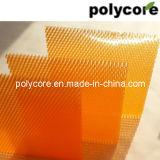 Panneau coloré de nid d'abeilles d'allumeur léger (PC6.0)