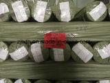 Prodotto di tela intessuto tintura del filato per la presidenza ed il sofà