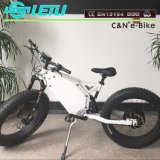 Bike электрического двигателя автошины Ebike 5000W 72V снежка Leili тучный безщеточный тучный