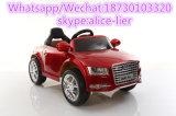 Potencia plástica de la fricción Montar-en el coche eléctrico del niño