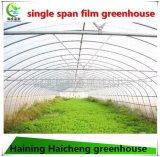 Serre chaude de film plastique avec la bonne performance d'isolation