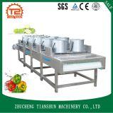 Secador da máquina de secagem para frutas e secador dos sacos da embalagem do vácuo