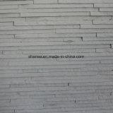 正面の壁は革新のための床のベストをタイルを張り、大理石模様をつける