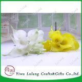 Hechos a mano Cerámica Blanca decorativa Flor de lirio de agua
