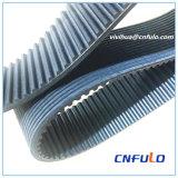 Cnfulo eine Kombination des mehrfachen V-Gewellten Riemens und des Zahnriemens