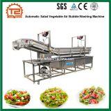 De hete Wasmachine van de Luchtbel van de Groente van de Salade van de Verkoop Automatische