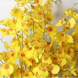 Seda Artificial Roxo/azul/branco/amarelo/verde/branco flor Flor Orquídea de dança