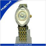特別なダイヤルのガールフレンドのギフトPsd-2581が付いている一義的な女性腕時計
