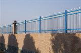 Шикарной голубой декоративной загородка гальванизированная обеспеченностью стальная 11-1