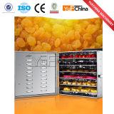 Deshidratador del alimento del hogar del indicador digital de la estructura compacta