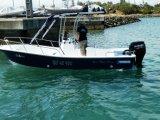 Liya 5.8m de Verschepende Boot van de Visserij van de Glasvezel van 8 Personen met Buitenboordmotoren