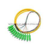 trecce ottiche monomodali della fibra di 12core Sc/APC con il rivestimento esterno