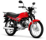 China Pas Cher moto, 50cc, 70cc, 100cc, 110cc, 125cc, Lifo moto, populaire en Afrique.