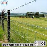 مزود بأشواك - [وير مش] يحمي سياج يستعمل لأنّ مجال مزرعة