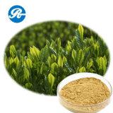 معمل مقتطف شاي [بولفنول] ([كس] رفض: 84650-60-2)