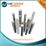 Deux conduits de liquide de refroidissement à denture hélicoïdale cimenté les tiges de carbure