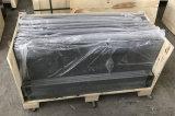 Controsoffitto del granito del nero del materiale da costruzione di buona qualità