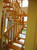 Escaleras decorativas de interior del acero inoxidable del diseño de acero de la escalera con las pisadas de cristal o de madera