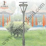 5W noir IP65 de luminaires décoratifs Lumière solaire de jardin (DZ-TT-221)