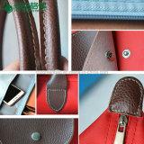Zakken die van de Totalisator van de opvouwbare van Dames Polyester van de Handtassen de Vouwbare de Zak van het Strand vouwen