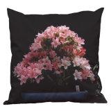 Cubierta Potted de la almohadilla de las plantas del rododendro nórdico