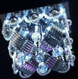 Lampade di vetro del soffitto nel disegno europeo