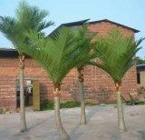 Piante e fiori artificiali della palma 330cm (GU-BJ-831-12-3.3M) dei Cochi