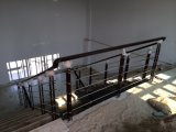 Corrimano dell'acciaio inossidabile del PVC per la rete fissa della guardavia del balcone