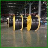 Conductor XLPE del alambre de cobre/cable eléctrico del PVC