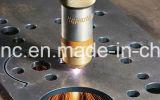 Ein Plasma und eine Flamme-Ausschnitt-Maschine für Stahlplatten