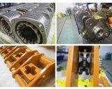 Élévateur à chaînes électrique de la fabrication 10 d'usine avec le chariot
