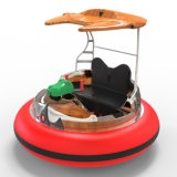 De ronde Boot van de Bumper voor het Park van het Water