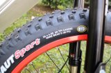 Рамка углерода Bike высокого качества электрическая тучная стальная