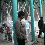 Moinho de farinha de trigo Máquinas fabricadas na China (80t)