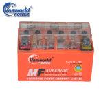 Leitungskabel-saure wartungsfreie Gel-Motorrad-Batterie der gute Qualitäts12n7l 12V7ah