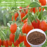 100% natural Wolfberry Chineses Extrato de Frutas