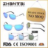 극화된 렌즈 (BAM0014)를 가진 기본적인 남성 준비되어 있는 재고 색안경