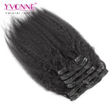 Vigin Cabello Humano Kinky directamente Clip Hair Extension