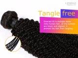 Het populaire Braziliaanse Weefsel van het Menselijke Haar van het Haar van de Krul van Afro van het Haar Diepe Kroezige Maagdelijke