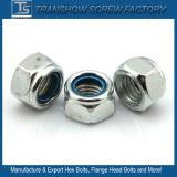 Noix en nylon principale de bride de garniture intérieure d'hexagone
