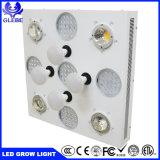 LEDは軽いクリー族の穂軸3590を完全なスペクトルのプラントがライトを育てる3000ワットの穂軸チップ育てる