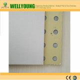 실내 쉬운 청결한 PVC는 벽 도와를 포함했다