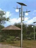 Lâmpada de jardim Solar (RS-GL004)