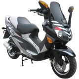 Scooter (WJ50O QT-21(1))