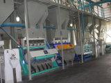 Máquina de classificação da cor do classificador/por muito tempo do arroz da cor da maioria de arroz popular do CCD e do diodo emissor de luz com melhor preço