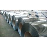 Galvanisierter Stahl Coil-36
