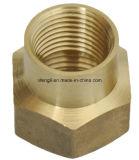 Encaixe hidráulico de bronze da fêmea ou do macho