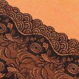 Lacet suisse africain de voile de mariage de tissu nigérien de robe grand