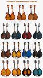 Mandoline de type de la couleur F d'usine de mandoline de la Chine