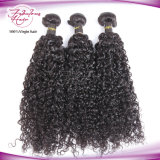 Естественная сырцовая супер курчавая индийская оптовая продажа волос